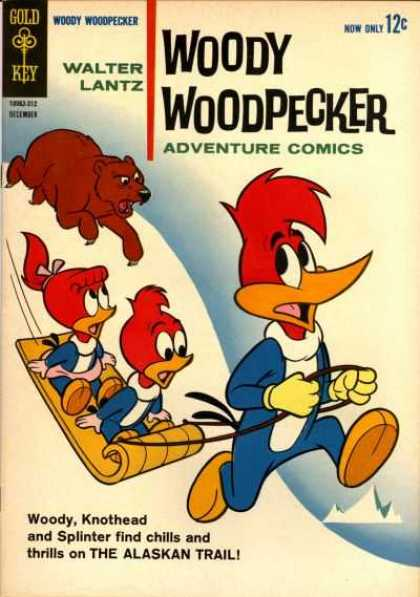 Woody Woodpecker 78 - Walter Lantz - Adventure Comics - Woodpeckers - Bear - Snow