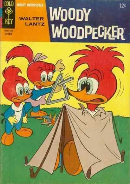 Woody Woodpecker 93 - Walter Lantz - Gold Key - Flame - Tent - Outdoor